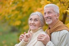 Härliga caucasian höga par i parkera Royaltyfri Fotografi