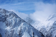 härliga caucasus dombay berg Royaltyfri Fotografi