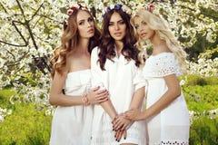 Härliga charmiga flickor i eleganta klänningar och blommas huvudbindel Arkivfoto