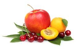 härliga Cherry för äppleaprikosar fotografering för bildbyråer