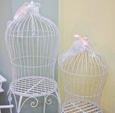 Härliga dekorativa burar med rosa band Royaltyfria Bilder