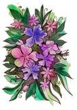 Härliga delikata blommor med sidor Arkivbild