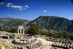 härliga delphi Royaltyfri Fotografi