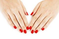 Härliga den manicured kvinnans händer med rött spikar polermedel Fotografering för Bildbyråer