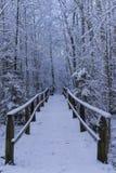 Härliga detaljer av filialer med snö och träbron i skandinaviskt vinterlandskap Royaltyfri Bild