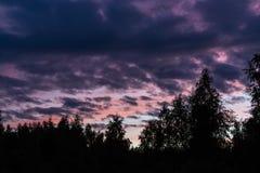 Härliga dramatiska moln i himlen på solnedgången över kanten av skogen arkivfoto