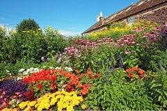 härliga dunbar blommor parkerar scotland Royaltyfri Foto