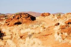 Härliga dyn i omansk öken Arkivfoton