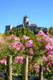 Härliga färgrika blommor och gammal historisk slott i backgrou royaltyfria bilder