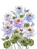 Härliga färgrika lotusblommablommor med sidor och blåklockor på vit bakgrund Abstrakt blom- bakgrund isolerat Arkivbild