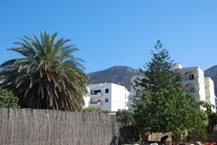 Härliga feriehus och tropiska träd på bakgrunden av berg royaltyfria foton