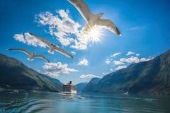 Härliga fjordar nära Flamen i Norge royaltyfria bilder