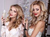 Härliga flickor med blont hår som poserar bredvid julgranen royaltyfri bild