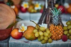 Härliga frukter som är ordnade med suddig bakgrund royaltyfri bild