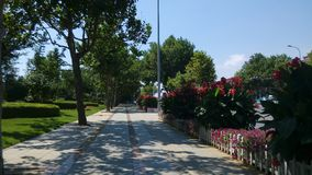 Härliga gångbanor för Renmin väg Royaltyfria Foton