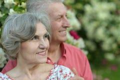 Härliga gammalare par Royaltyfri Bild