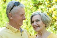 Härliga gammalare par Arkivfoton