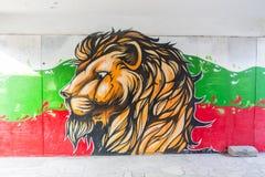 Härliga gatakonstgrafitti Abstrakt idérikt teckningsmode färgar på väggarna av staden Stads- samtida Fotografering för Bildbyråer