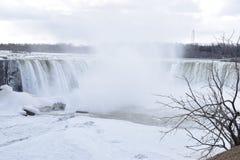 Härliga gigantiska fryste hästskoNiagara vattenfall med ett stort träd på en djupfryst vårdag i Niagara Falls i Ontario, Kanada Arkivfoto