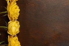 Härliga gula rosor på en mörk bakgrund Arkivbilder