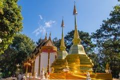 Härliga guld- pagoder på Wat Phra That Doi Tung, Chiang Rai Wat Phra That Doi Tung består av av tvilling- enstil stupas, en Royaltyfria Foton