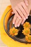 härliga händer Royaltyfri Bild
