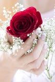 härliga händer Royaltyfria Bilder