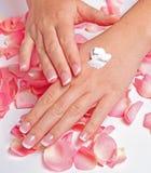 Härliga händer med den franska manicuren Fotografering för Bildbyråer