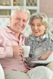 Härliga höga par genom att använda bärbara datorn hemma Royaltyfri Fotografi