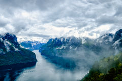 Härliga Hardanger fjorden naturen Norge Royaltyfri Foto