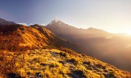 Härliga Himalayan berg royaltyfri foto