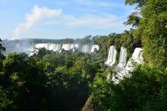 Härliga Iguazu Falls i Argentina Sydamerika royaltyfri bild