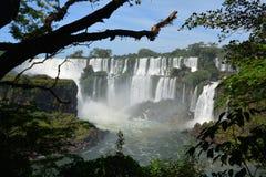 Härliga Iguazu Falls i Argentina Sydamerika royaltyfri fotografi