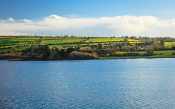 Härliga irländska landskapgräsplanängar på floden Co.Cork, Irland. royaltyfria foton