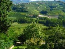 härliga italienska vingårdar Royaltyfria Foton