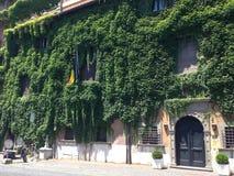 Härliga Ivy Covered Building i Rome, Italien Arkivfoton