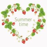 härliga jordgubbar vektorillustration av ett realistiskt Royaltyfri Foto