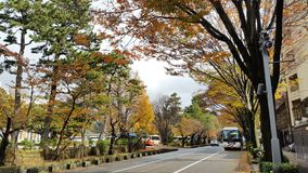 Härliga Kanazawa, Japan Royaltyfri Fotografi