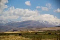 Härliga Kirgizstan Royaltyfria Bilder