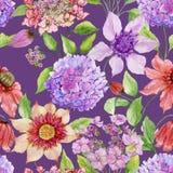 Härliga klematis- och vanlig hortensiablommor med gräsplansidor mot purpurfärgad bakgrund seamless blom- modell vektor illustrationer
