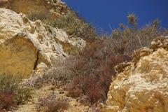 Härliga klippor av Algarve, i söderna av Portugal Bekläda beskådar Fotografering för Bildbyråer