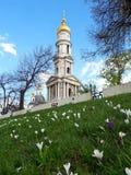Härliga krokusar blommar i stadssängen på bakgrunden av en härlig tempel arkivbilder