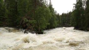 Härliga krusningar på floden flödar över färgrika stenar i sommar arkivfilmer