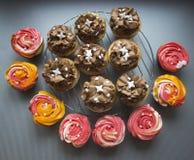 Härliga kulöra muffin som står på den gråa bakgrunden efter stekhett slut upp Royaltyfria Foton