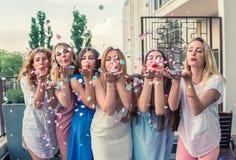 Härliga kvinnavänner som har gyckel på ungmöpartiet royaltyfria foton