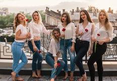 Härliga kvinnavänner som har gyckel på ungmöpartiet arkivbild