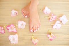 Härliga kvinnliga ben på ljus golvbakgrund Royaltyfri Bild