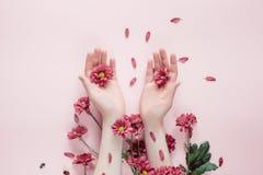 Härliga kvinnliga händer för närbild med purpureblommor på rosa bakgrund Sk?nhetsmedel f?r handanti-skrynkla arkivbild