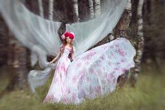 Härliga kvinnor, i framkallning av den långa klänningen för vind royaltyfri foto