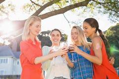 Härliga kvinnor som rostar exponeringsglas av rött vin Royaltyfria Bilder